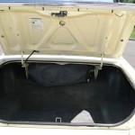 ltd trunk
